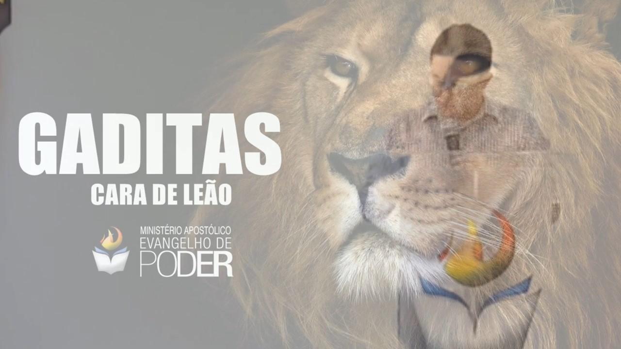 GADITAS - CARA DE LEÃO