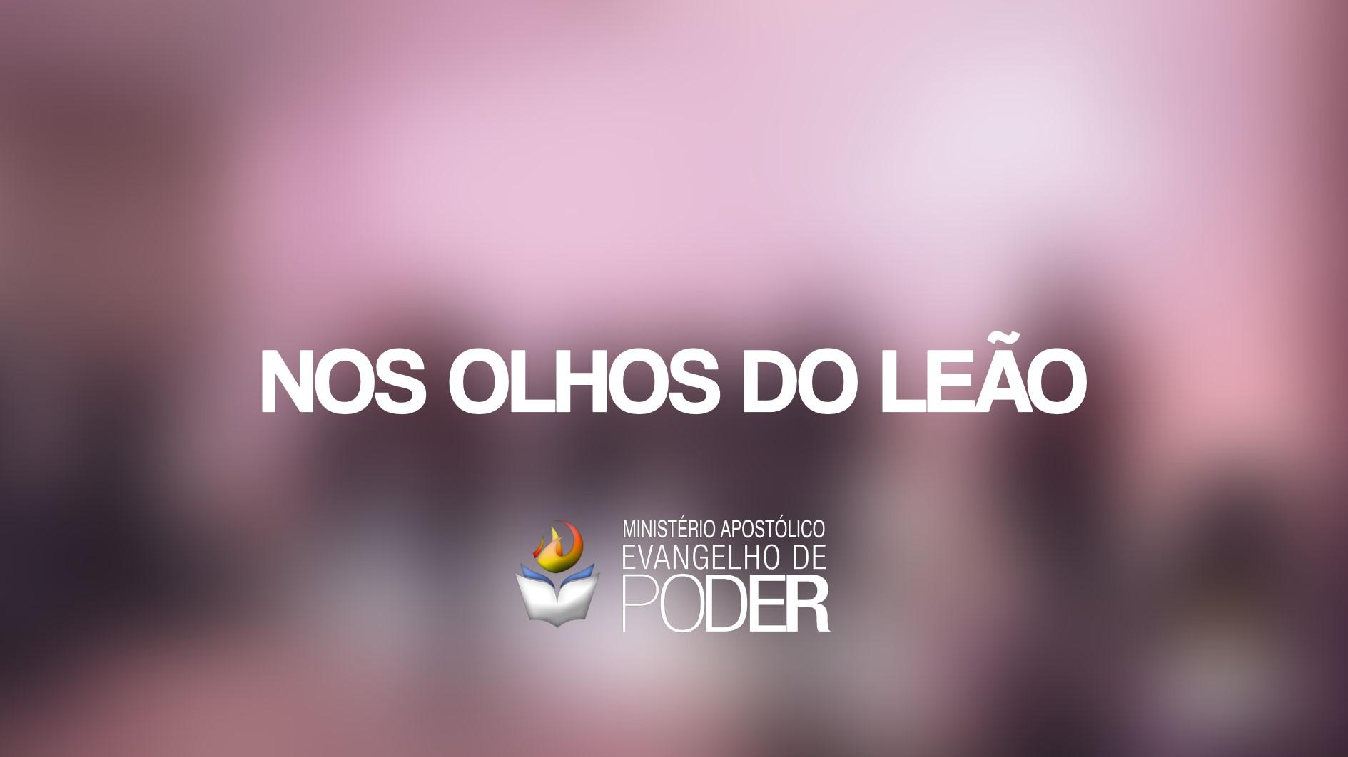 NOS OLHOS DO LEÃO - VANESSA TARGA